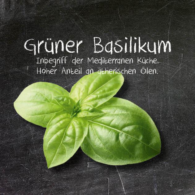 Grüner Basilikum