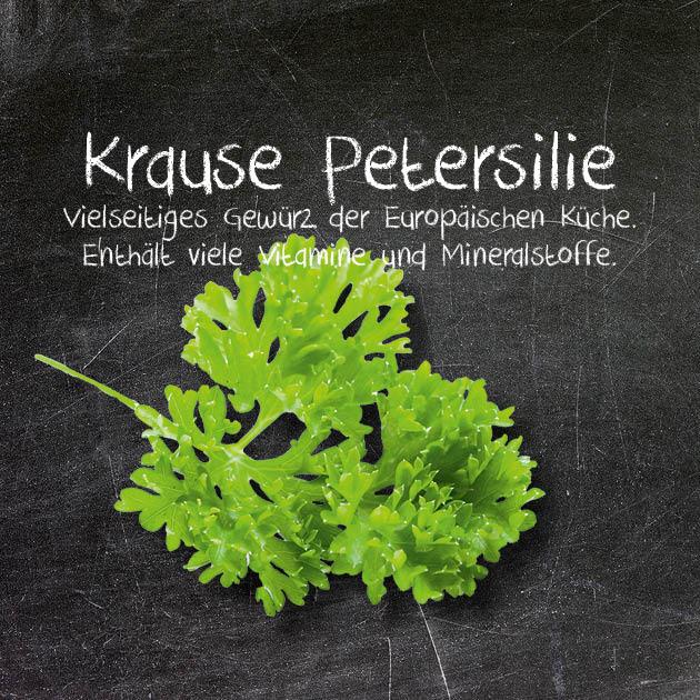 Krause Petersilie