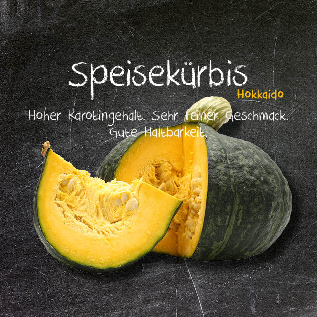 Speisekürbis-HK