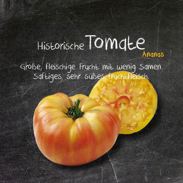 Tomate-AN
