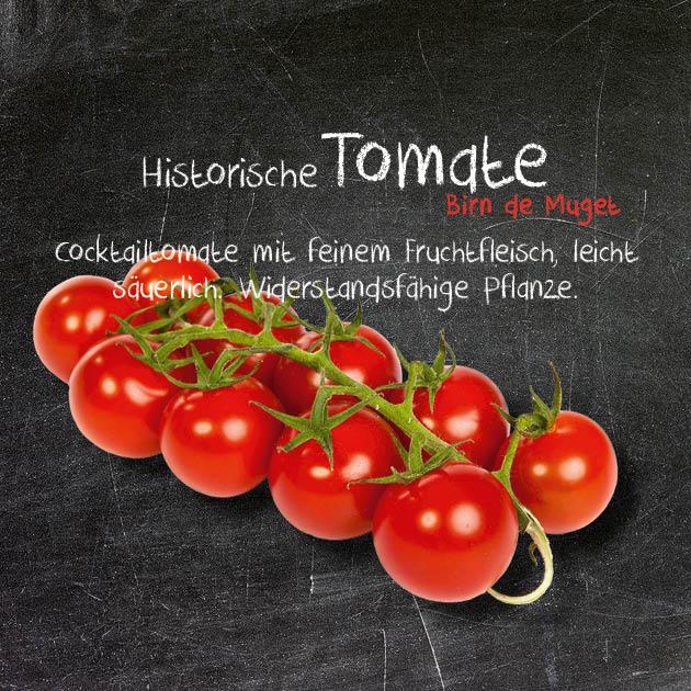 Tomate-BM