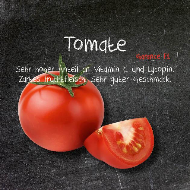 Tomate-GA