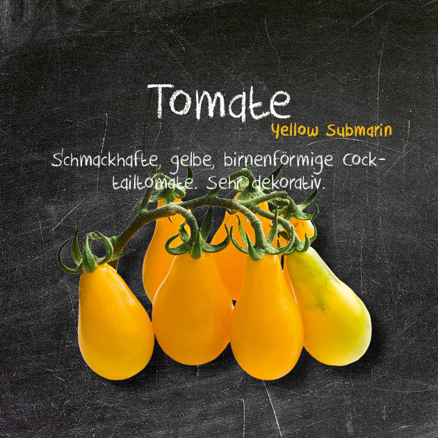 Tomate-YS